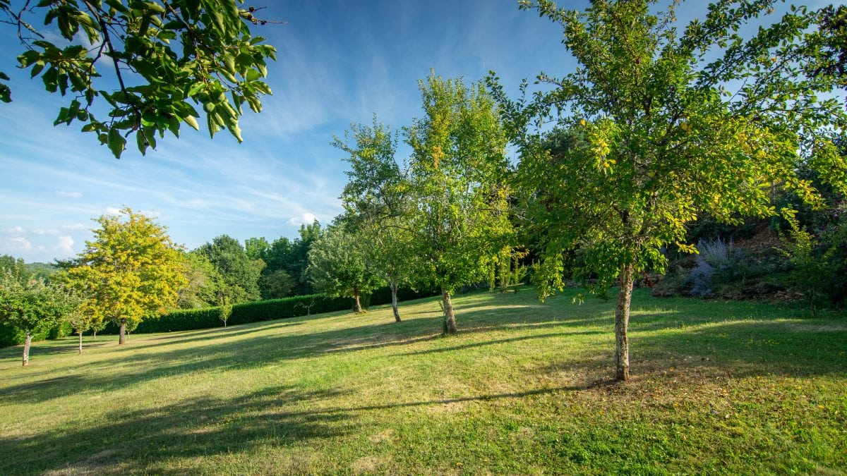 Orchard - La Borie Gites Holiday Accommodation Dordogne Lot France